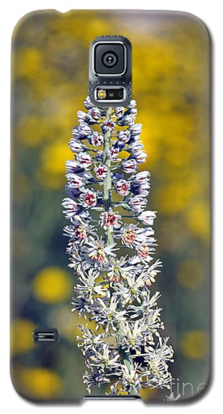 Galaxy S5 Case featuring the photograph Wild Mignonette Flower by George Atsametakis