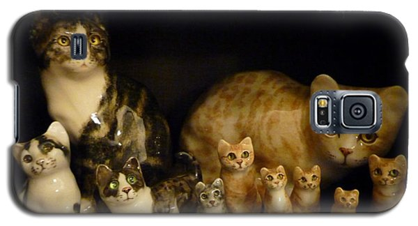 Galaxy S5 Case featuring the photograph Winstanley Cats by Jeanette Oberholtzer
