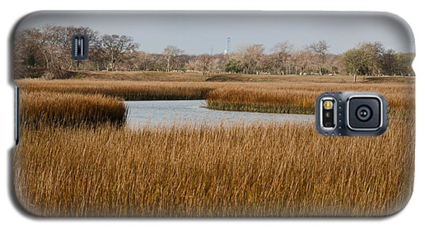 Winter Marsh Galaxy S5 Case