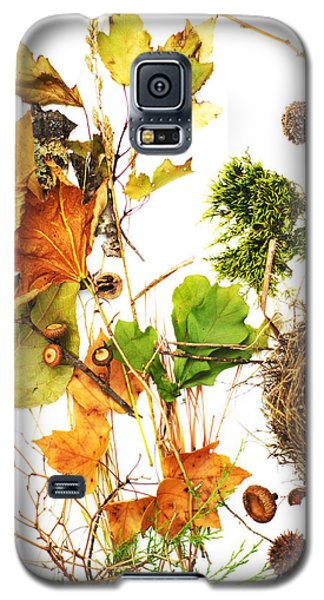 Woodsy Arrangement Galaxy S5 Case by Suzanne Powers
