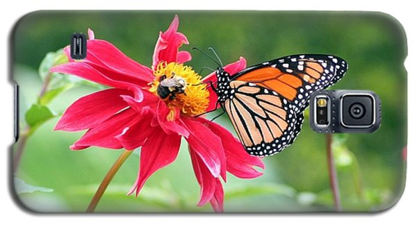 Galaxy S5 Case featuring the photograph Working Together by Karen Silvestri