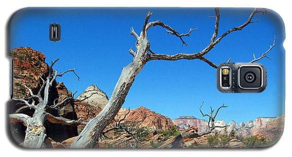 Zion Reaching Tree Galaxy S5 Case