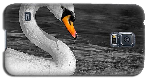 Galaxy S5 Case featuring the photograph Mute Swan by Brian Stevens
