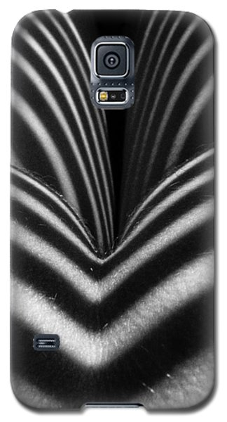 2621 Zebra Woman Closeup Galaxy S5 Case