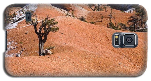 Bryce Galaxy S5 Case