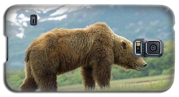 Alaska Wilderness Galaxy S5 Case