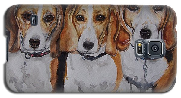 3 Amigo Beagles Galaxy S5 Case