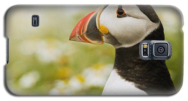 Atlantic Puffin In Breeding Plumage Galaxy S5 Case by Sebastian Kennerknecht