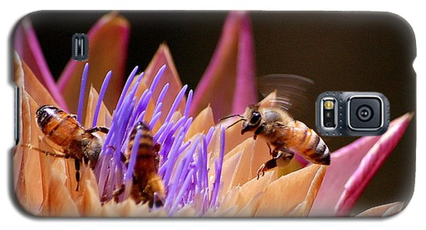 Galaxy S5 Case featuring the photograph Bees In The Artichoke by AJ  Schibig