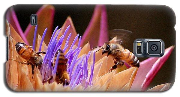 Bees In The Artichoke Galaxy S5 Case by AJ  Schibig