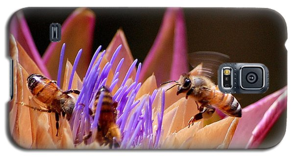 Bees In The Artichoke Galaxy S5 Case
