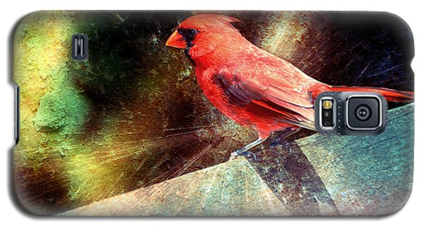Cardinal  Galaxy S5 Case by Elaine Manley