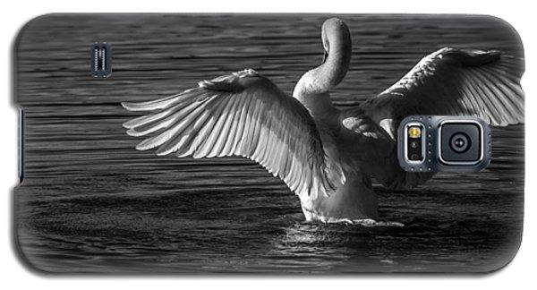 Galaxy S5 Case featuring the photograph Carpe Diem 2 by Brian Stevens