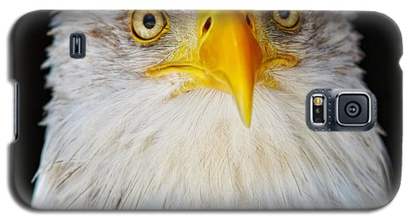 Closeup Portrait Of An American Bald Eagle Galaxy S5 Case by Nick  Biemans