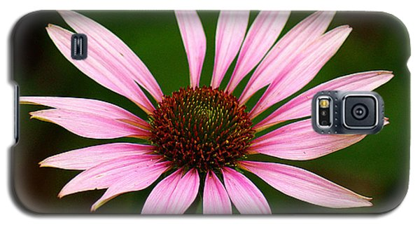 Galaxy S5 Case featuring the photograph Coneflower - Echinacea by Lisa L Silva