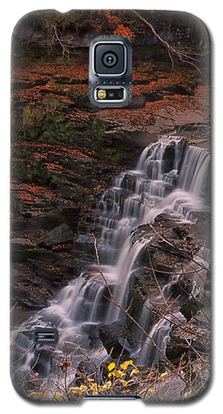 Corra Linn Galaxy S5 Case