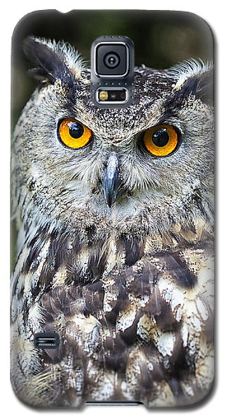 Eagle Owl Galaxy S5 Case by Ian Merton