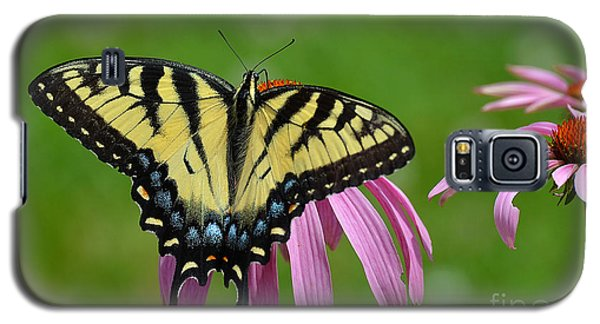 Eastern Tiger Swallowtail Galaxy S5 Case