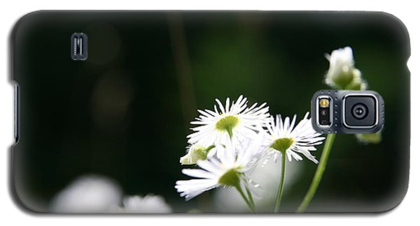 Galaxy S5 Case featuring the photograph Enlightened  by Neal Eslinger