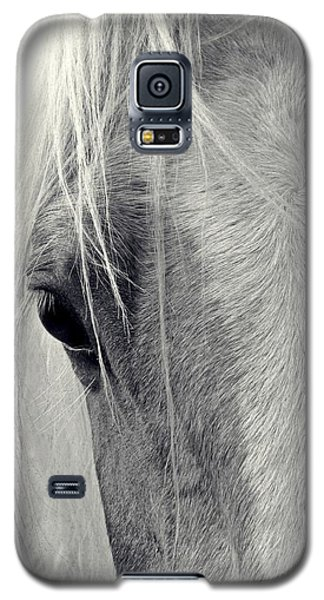 Equine Study Galaxy S5 Case by Laurinda Bowling