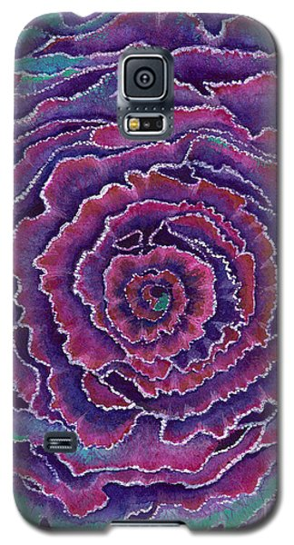 Galaxy S5 Case featuring the painting Eye Of The Storm by Nan Wright