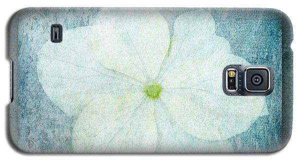 Hydrangea Galaxy S5 Case by Lynn Bolt