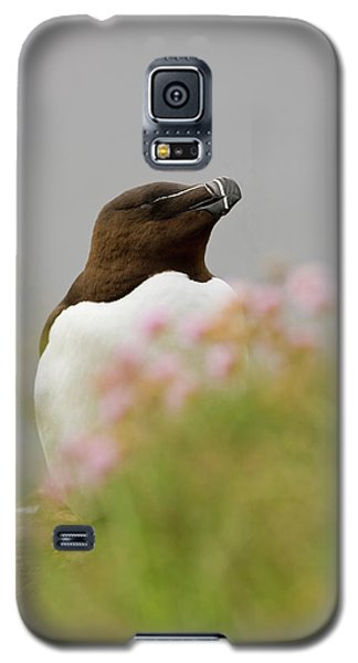 Iceland, Latrabjarg Galaxy S5 Case by Jaynes Gallery