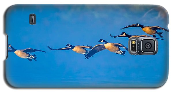 Incoming Geese Galaxy S5 Case