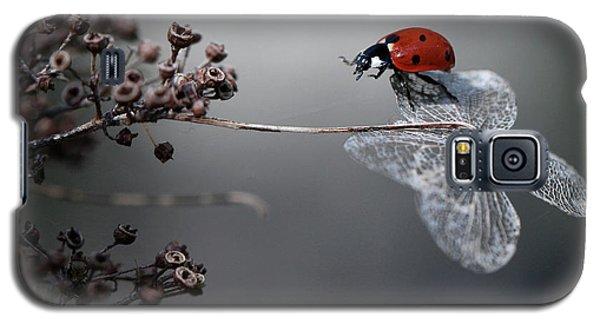 Ladybug Galaxy S5 Case - Ladybird On Hydrangea. by Ellen Van Deelen