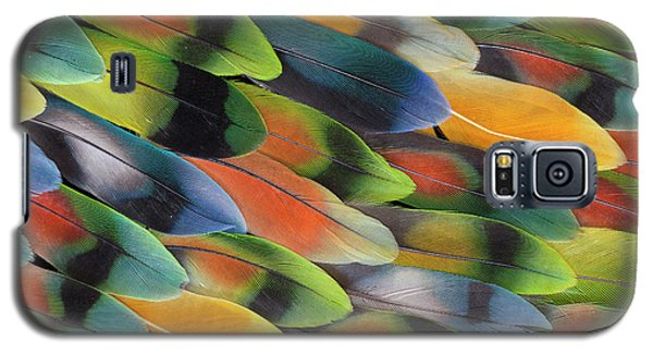 Lovebird Galaxy S5 Case - Lovebird Tail Feather Pattern And Design by Darrell Gulin