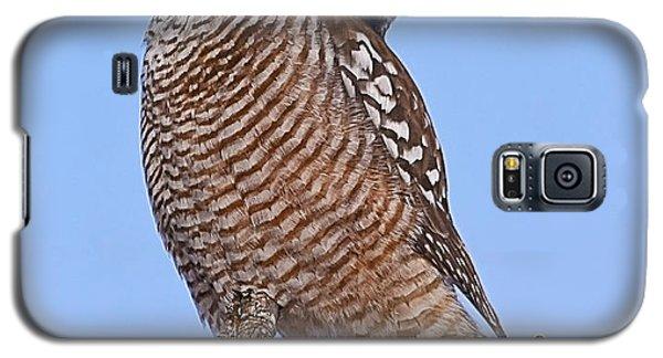 Northern Hawk Owl Galaxy S5 Case