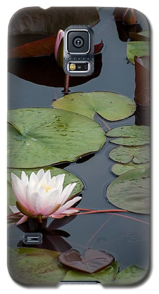 Galaxy S5 Case featuring the photograph Pink Water Lily by Wayne Meyer