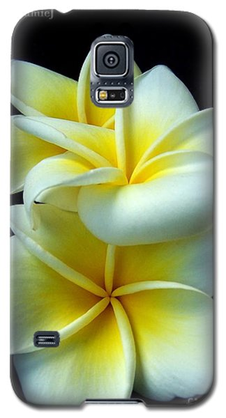 3 Plumerias Galaxy S5 Case