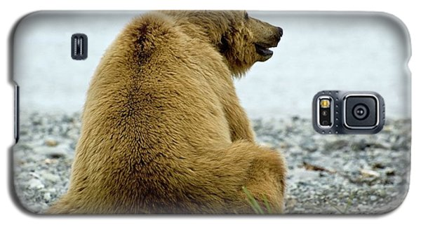 Resting Bear Galaxy S5 Case
