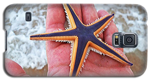 Galaxy S5 Case featuring the photograph Royal Starfish - Ormond Beach Florida by Melissa Sherbon