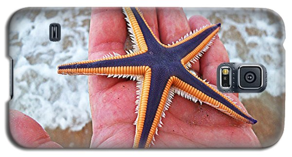 Royal Starfish - Ormond Beach Florida Galaxy S5 Case