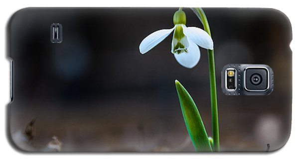 Snowdrop Flower Galaxy S5 Case