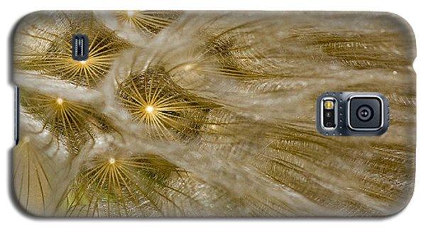 Spun Gold Galaxy S5 Case by Betty Depee