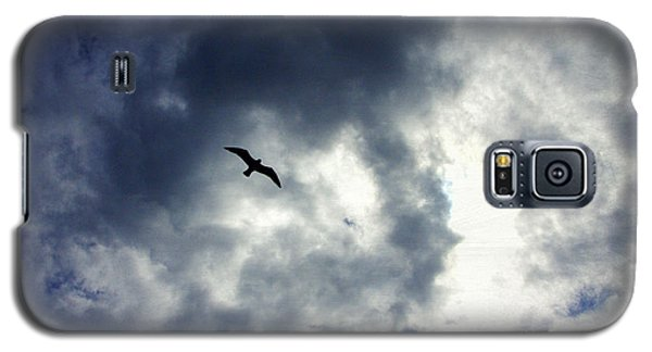 Galaxy S5 Case featuring the photograph Storm Flyer by Marilyn Wilson