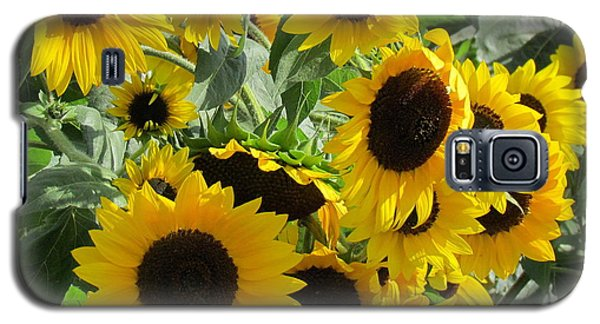 Sunflower Field Galaxy S5 Case by France Laliberte