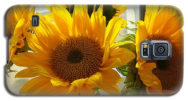 3 Sunflowers Galaxy S5 Case