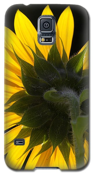 Sunshine Galaxy S5 Case