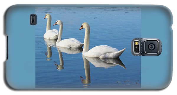 3 Swans A-swimming Galaxy S5 Case