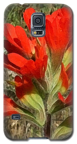 Texas Paintbrush Galaxy S5 Case