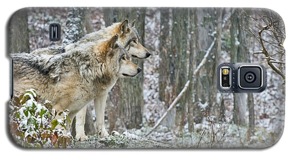 Timber Wolves Galaxy S5 Case