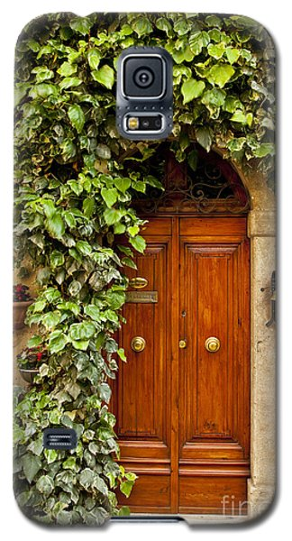 Tuscan Door Galaxy S5 Case
