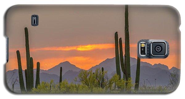 Usa, Arizona, Saguaro National Park Galaxy S5 Case
