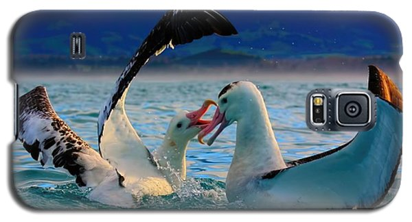 Wandering Albatross Galaxy S5 Case by Amanda Stadther