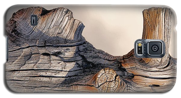 Galaxy S5 Case featuring the photograph Wooden Landscape by JoAnn Lense