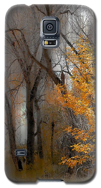 3707 Galaxy S5 Case by Peter Holme III